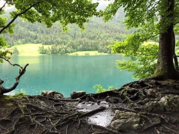 Wanderung um den Hintersteiner See (1,5 h)
